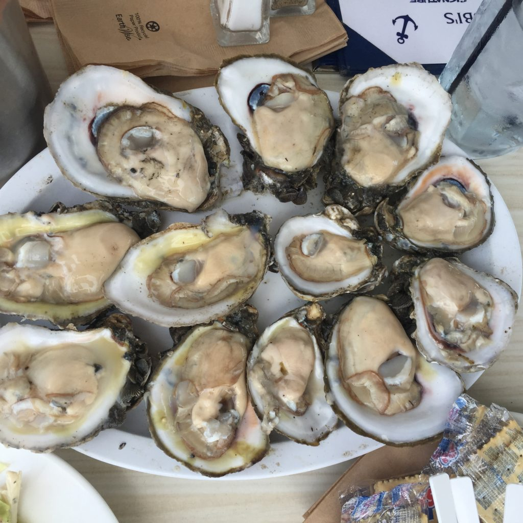 Look how BIG these oysters are!